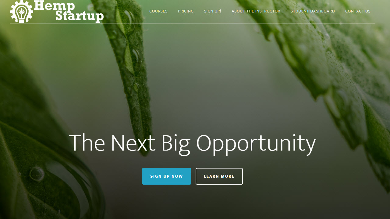 hemp startup home page